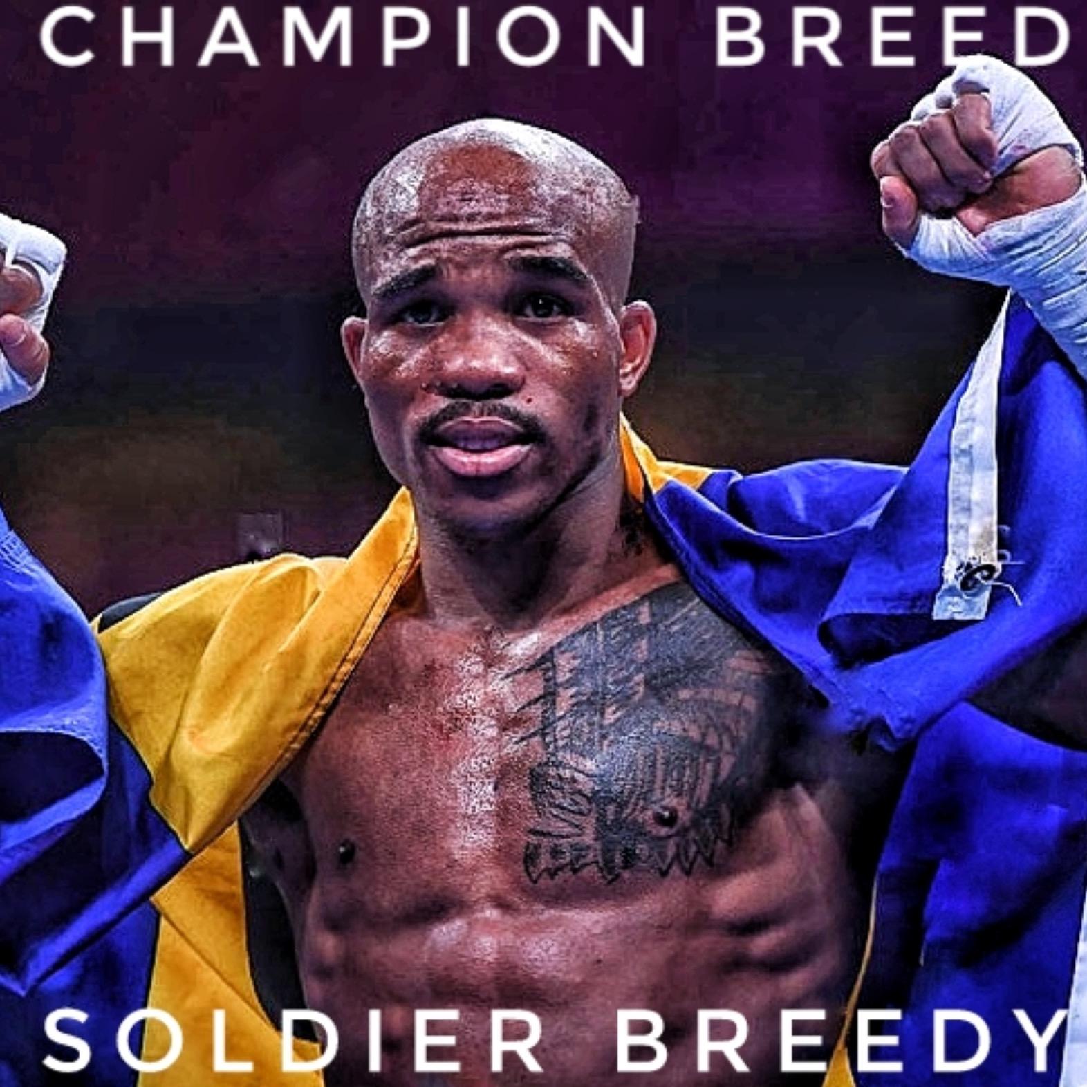 """Cobia """"Soldier"""" Breedy"""